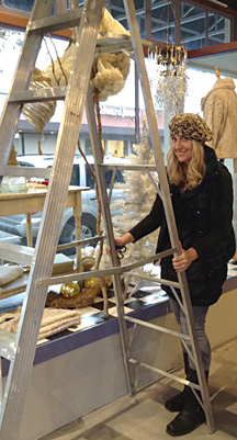 xmas_shelly_ladder_narrow